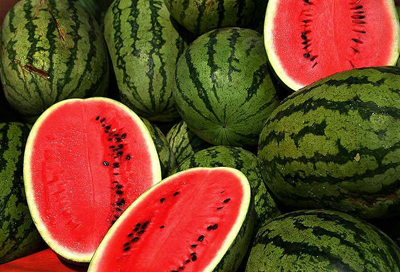 watermelon origin