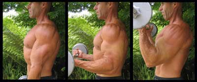 Put Shoulders And Biceps Together For A Great Upper Body Workout